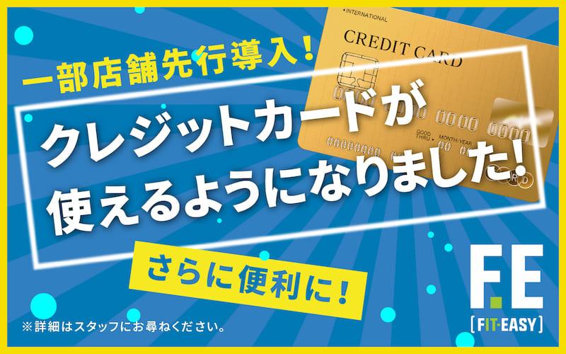 フィットイージー,クレジットカード決済導入